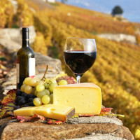 tuscany-food-wine-tours